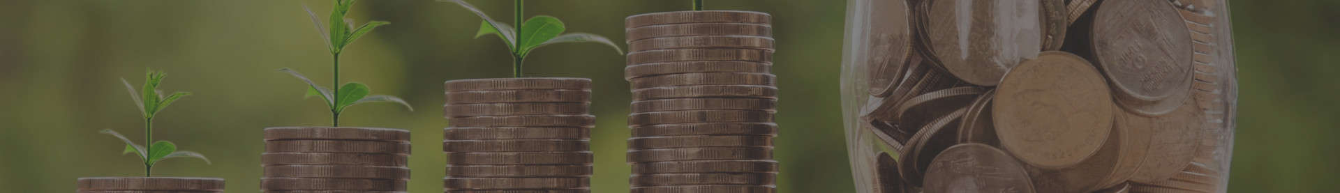 Programe perfectionare profesionala finante si bugetare